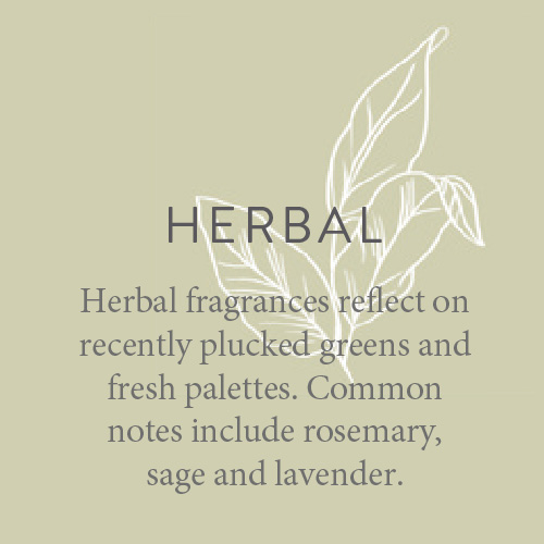 Fragrance candles Herbal fragrances reflect on recently plucked greens and fresh palettes. Common notes include rosemary, sage and lavender.